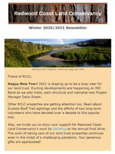 Winter 2020-2021 newsletter image